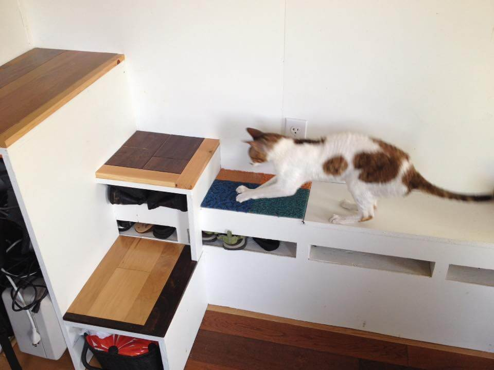 Pet friendly tiny house: helping our cat feel at home 5 when you're building a tiny house, it's important not to forget about the furry members of your family (and no, i'm not referring to uncle frank). Here's how we made our tiny home pet friendly: