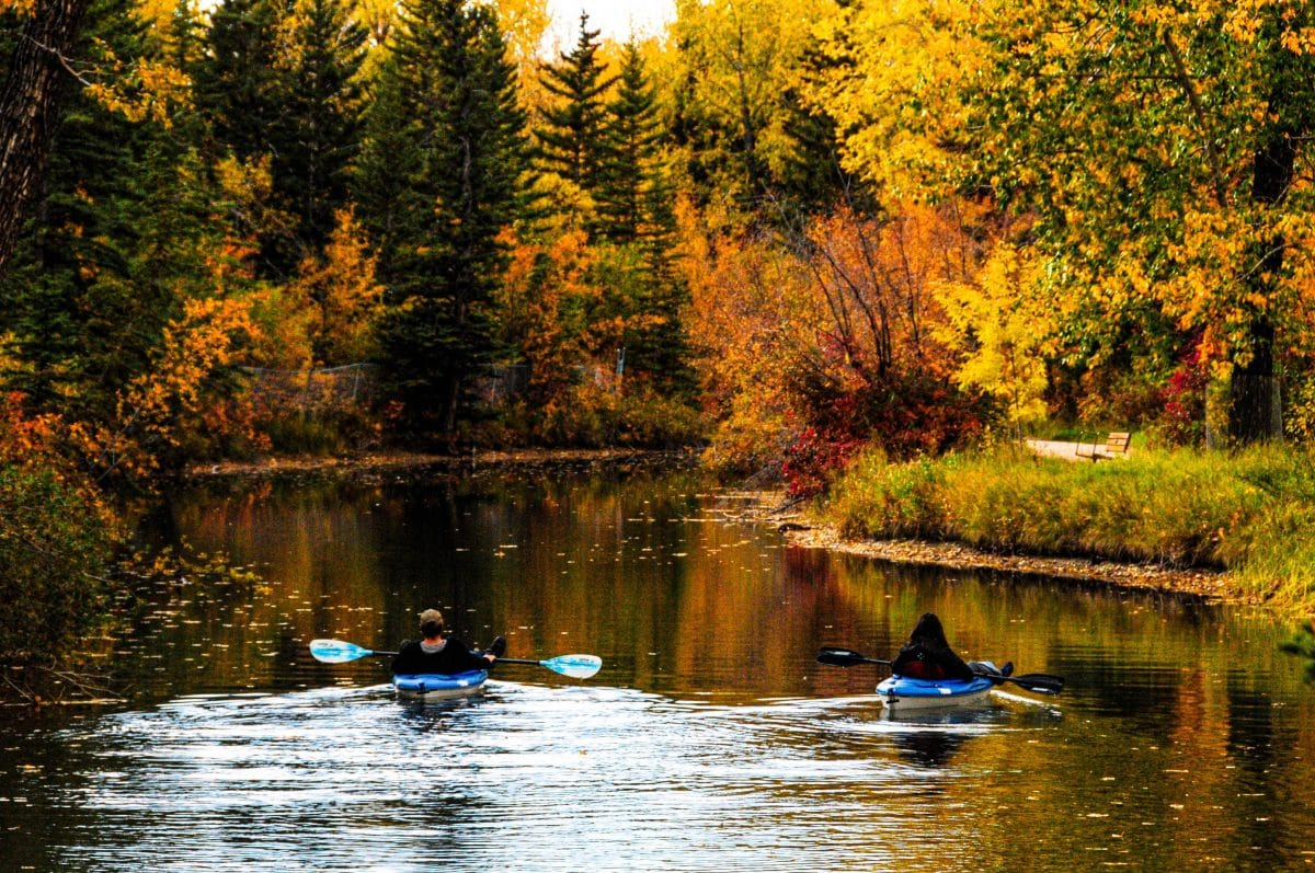 Planning on going kayaking on your next trip? Here's a useful guide